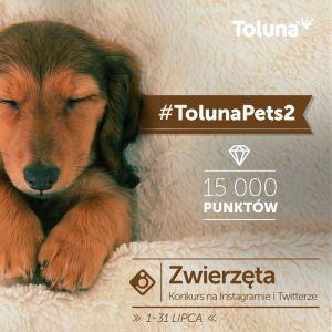 TolunaPets2_PL
